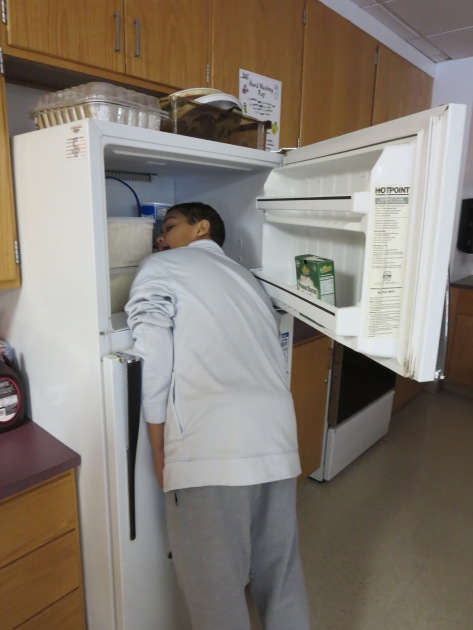 #241543903 (head in freezer)