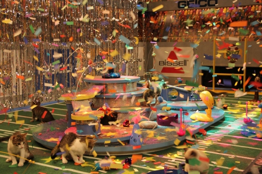 kitty half time show at puppy bowl